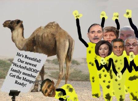 Camel-Gives-Birth-